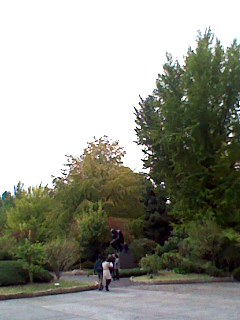 上野の森.jpg