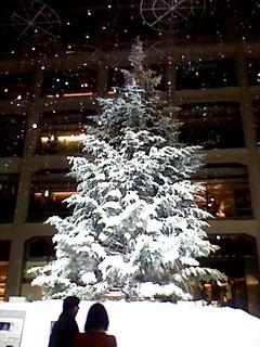 丸の内クリスマスツリー.JPG