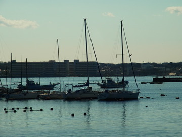 漁港.JPG