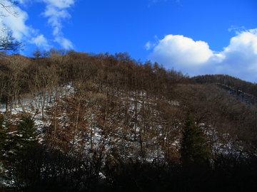 冬の山.JPG