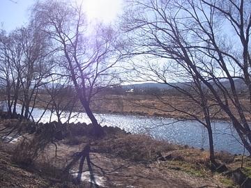 早春の川.JPG