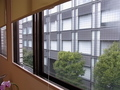 カウンセリングルーム1の窓外
